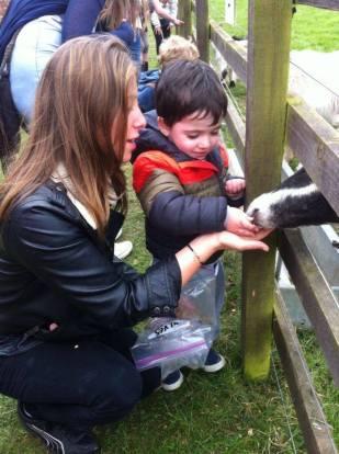tel aviv nursery